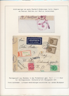 Blatt Nr. 221
