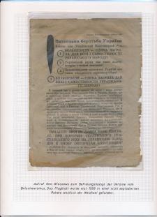 Blatt Nr. 478