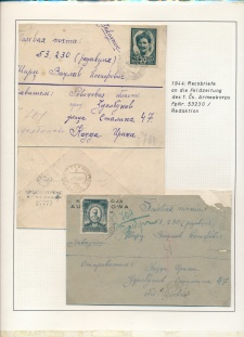 Blatt Nr. 507