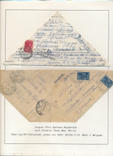 Blatt Nr. 510