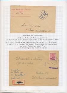 Blatt Nr. 537