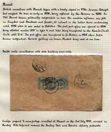 Page No. 243